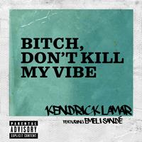 Kendrick Lamar - Bitch, Don't Kill My Vibe (Remix [Explicit])