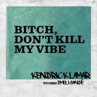 Kendrick Lamar - Bitch, Don't Kill My Vibe (Remix)
