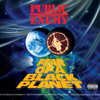 Public Enemy - Fear Of A Black Planet (Explicit)