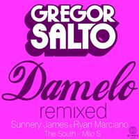 Gregor Salto - Damelo Remixed
