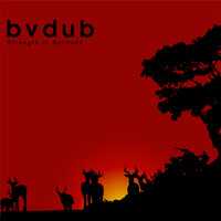 Bvdub - Strength in Solitude