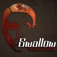 Swallow - Overdue Orange
