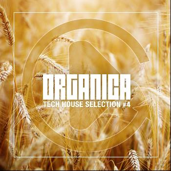 Various Artists - Organica, Vol. 4