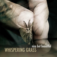 Whispering Grass - Nice But Beautiful