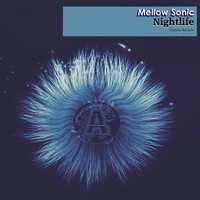 Mellow Sonic - Nightlife