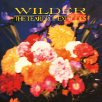 The Teardrop Explodes - Wilder (Remastered Expanded Edition)
