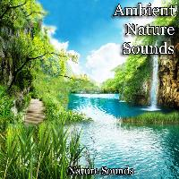 Nature Sounds - Ambient Nature Sounds
