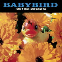Babybird - There's Something Going On