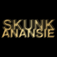 Skunk Anansie - Smashes and Trashes
