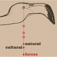 Warren Smith - Natural / Cultural Forces