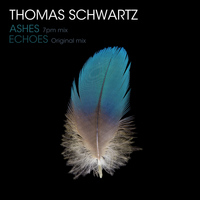 Thomas Schwartz - Echoes / Ashes