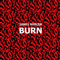 James Mercer - Burn