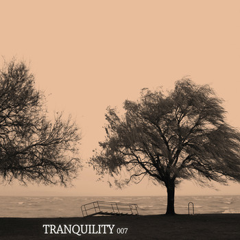 Various Artists - Tranquility 007
