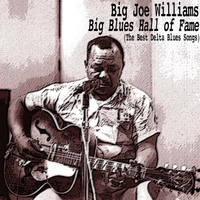 Big Joe Williams - Big Blues Hall of Fame