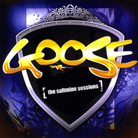 Goose - The Saltmine Sessions