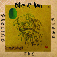 Cate Le Bon - Shoeing The Bones