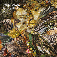 Philip Selway - Running Blind