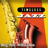 Big Joe Williams - Timeless Jazz: Big Joe Williams