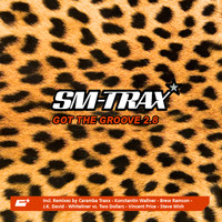 SM-Trax - Got the Groove 2.8