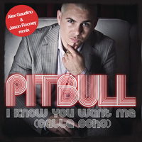 Pitbull - I Know You Want Me (Calle Ocho) (Alex Gaudino & Jason Rooney Remix)