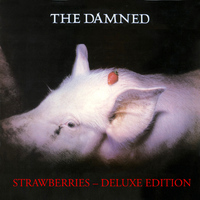 The Damned - Strawberries