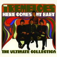 The Tremeloes - Here Comes My Baby - The Ultimate Collection