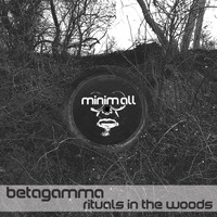 Betagamma - Rituals in the Woods