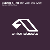 Super8 & Tab - The Way You Want