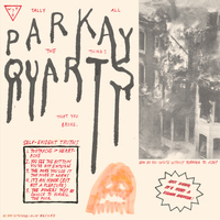 Parquet Courts - You've Got Me Wonderin' Now