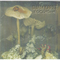 Djam Karet - Ascension