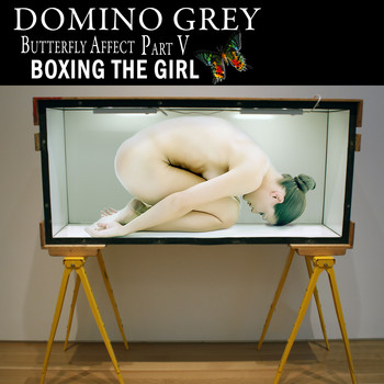 Domino Grey - Butterfly Affect, Pt. V Boxing the Girl