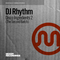 DJ Rhythm - Disco Ingredients 2 (The Second Batch)