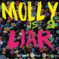 His Sweet Surprise - Molly Is A Liar