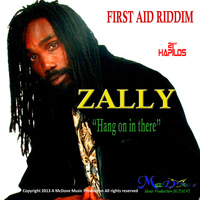 Zally - Hang on in There - Single