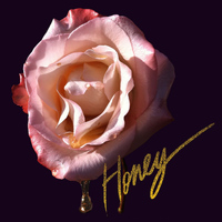 CSS - Honey + Remixes