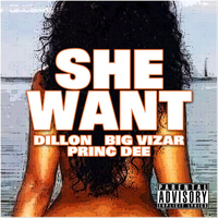 Dillon - She Want (feat. Big Vizar , Princ Dee) - Single