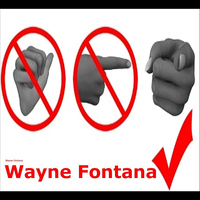 Wayne Fontana - Something Inside So Strong