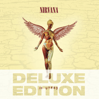 Nirvana - In Utero - 20th Anniversary - Deluxe Edition