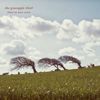 The Pineapple Thief - What We Have Sown (Remastered)