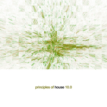 Various Artists - Principles of House 10