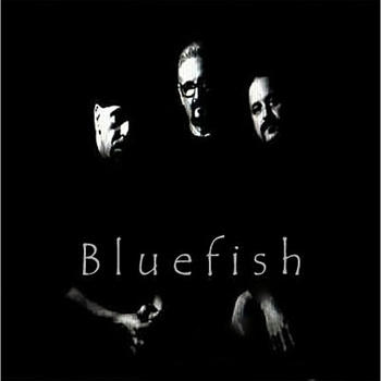 Bluefish - Live At the Coachhouse
