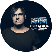 Tiger Stripes - Shake That Acid / The Shadows