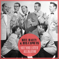 Bill Haley & His Comets - See You Later Alligator