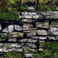 Sean Danke - Different Vibe