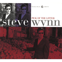Steve Wynn - Pick Of The Litter