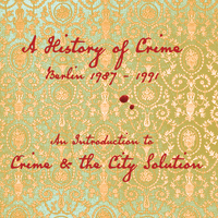 Crime And The City Solution - An Introduction To