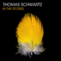 Thomas Schwartz - In The Stories
