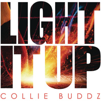 Collie Buddz - Light It Up
