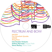 Irish Chamber Orchestra - Plectrum and Bow