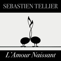 Sébastien Tellier - L'amour naissant - Single